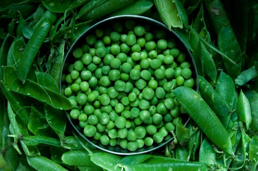 summer-peas