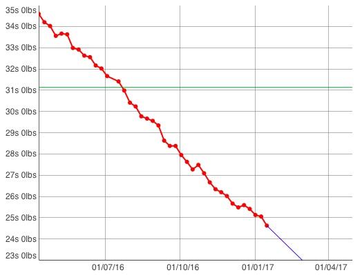 progress-graph-jan-2017
