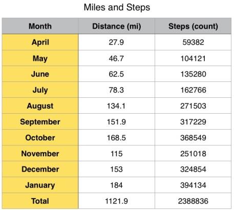 january-walking-totals