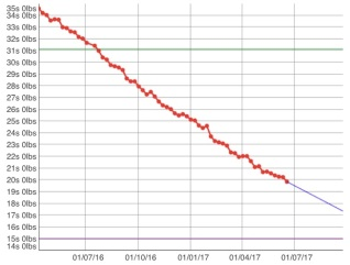 weight graph 240617
